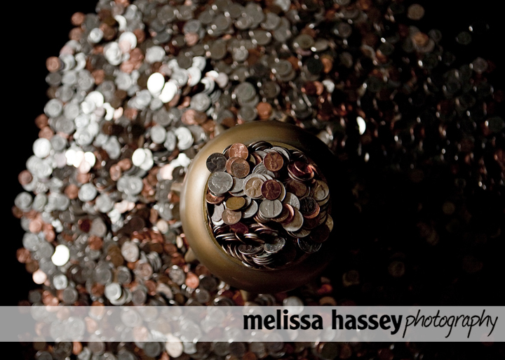 That is a lot of Pennies!  Guess how much for a Photograph!